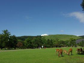 奈良県 - 地域のPRイメージ画像