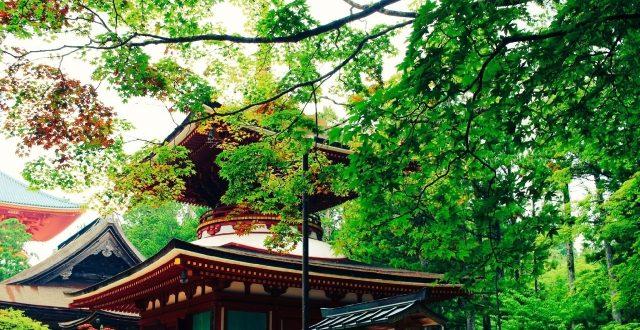 和歌山県 - 地域のPRイメージ画像